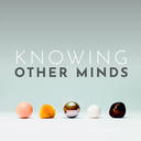 Knowing Other Minds